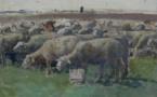 12 Les moutons Jules Louis Rame